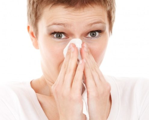 allergy cold disease flu